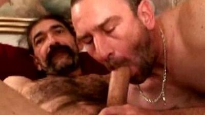 Hairy bear duo sucking black cock close up